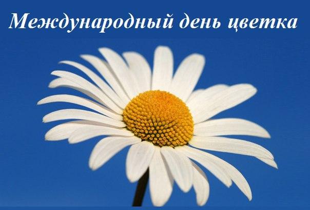 yvyXRedBXtA